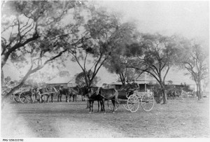 Meetings held by politically active women after horse and buggy transport in the heat. Photo: Royalty Free Stock Photos